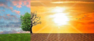 Climate Change (Image: Tumisu/Pixabay)