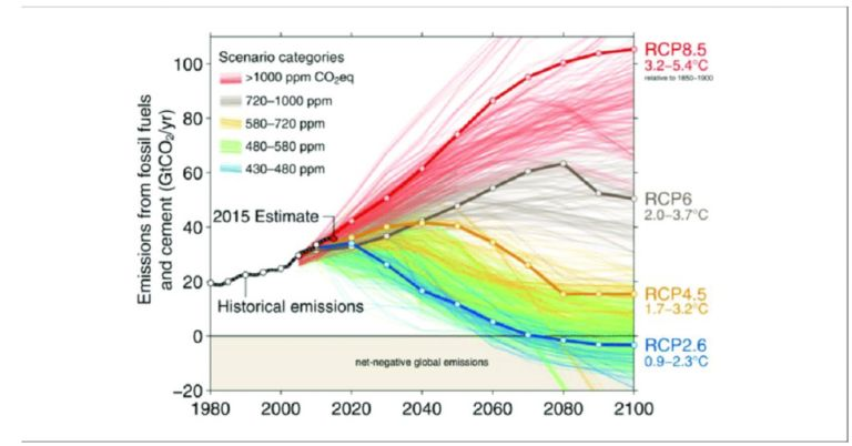 RCPs for Emissions from fossil fuels and cement (Image: N. Craik/University of Waterloo)
