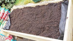 Planter filled with compost (Image: T. Larkum)