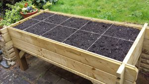 Raised planter ready to grow (Image: T. Larkum)