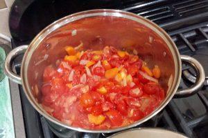 Vegetable soup (Image: T. Larkum)